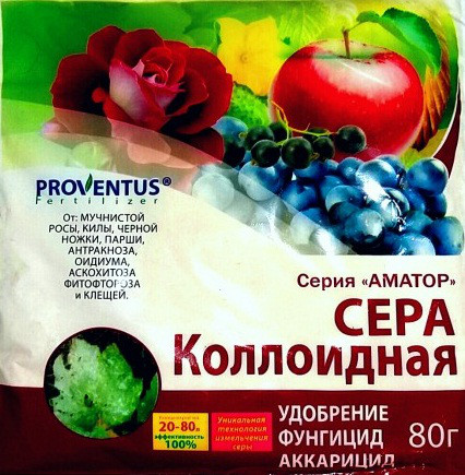 Универсальный системно-контактный фунгицид Коллоидная сера, 80 г, PROVENTUS (Провентус), Украина
