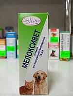 Мелоксивет суспензия 10 мл противовоспалительное,  жаропонижающее и болеуспокаивающее средство