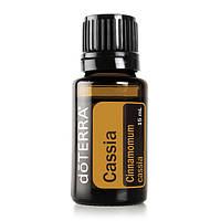 Cassia Essential Oil / Кассия (Cinnamomum cassia), эфирное масло, 15 мл