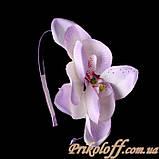 Орхидея гавайская на обруче, фото 2