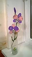 Ветка орхидеи,45 см.