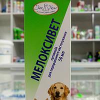 Мелоксивет суспензия 50 мл противовоспалительное,  жаропонижающее и болеуспокаивающее средство