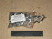Заклепка 8х15 накладки колодки тормоза DIN7338 ST (100 шт.) (пр-во Lumag)