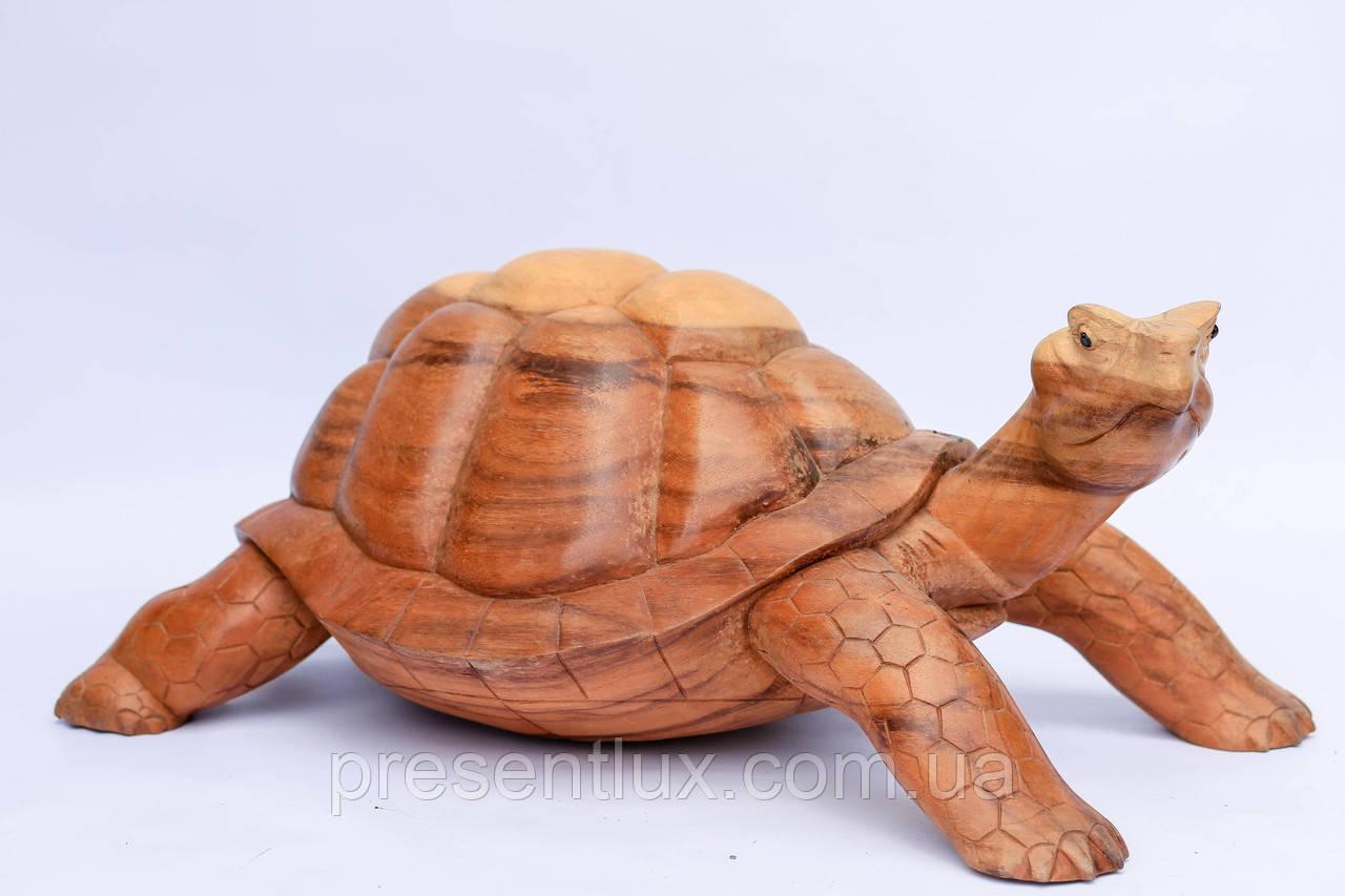 Черепаха (санокли)