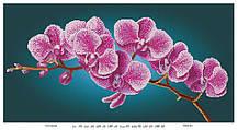 Схема для вышивки Ветка орхидеи