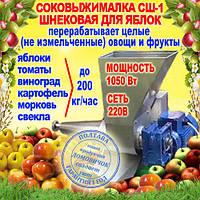 Шнековая соковыжималка СШ-1 220В, для яблок (до 200 кг/ч) и других фруктов не требующая периодической очистки, фото 1