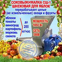 Шнековая соковыжималка СШ-1 380В, для яблок (до 200 кг/ч) и других фруктов не требующая периодической очистки, фото 1