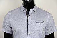 Рубашка мужская ANG 41210/41215 норма и батал