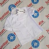 Школьная детская блузка для девочек оптом TERKO