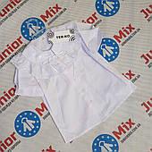 Школьная детская блузка для девочек оптом TERKO. ПОЛЬША