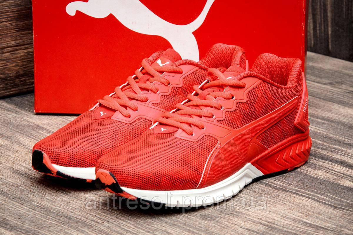 Кроссовки мужские Puma Ignite Dual, красные (2605-5),  [   41 43 45  ]