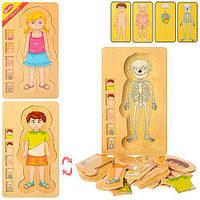 Деревянная игрушка Гардероб MD 1181