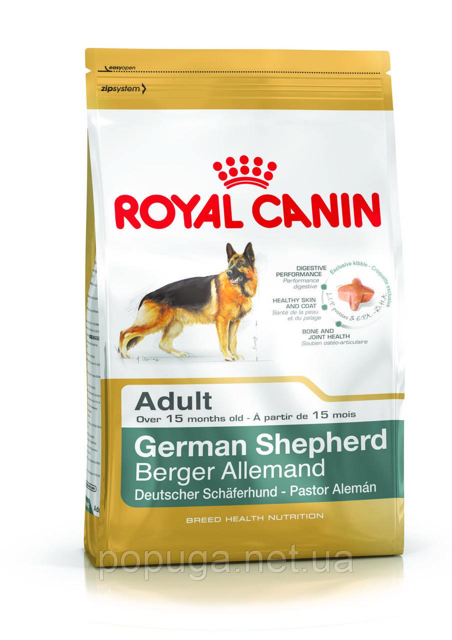 Royal Canin German Shepherd Adult корм для овчарки, 11 кг