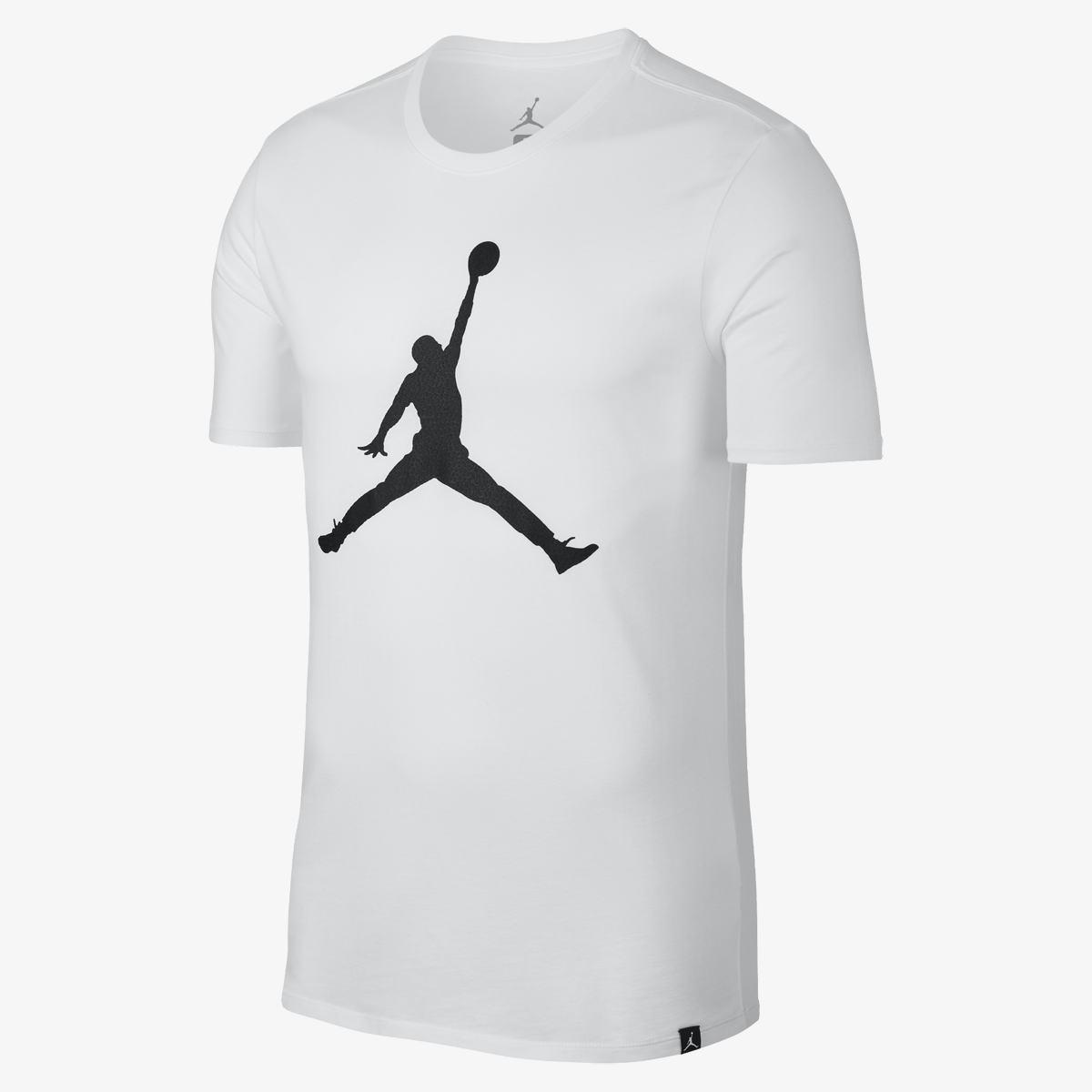 Мужская футболка NIKE Jordan Tee Iconic Jumpman (Артикул  908017-103) e2d2476a0eb