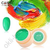 Гель-краска Canni №608 (весенне-зеленая), 5 мл