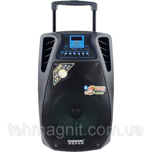 Колонка на аккумуляторе комбоусилитель Temeisheng SL 12-02 комбик 2 микрофона, Bluetooth ( Реплика )