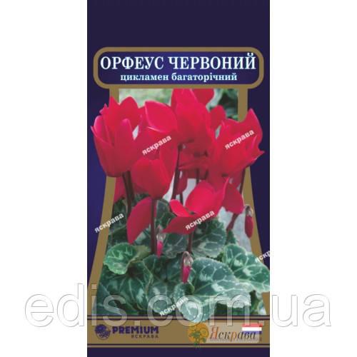 Цикламен персидский Орфеус 5 семян ТМ Яскрава