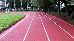 Teking Sport Track для беговых дорожек, фото 2