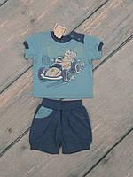 Футболка и шорты летние для новорожденного (трикотаж), р. 74
