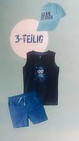Комплект-тройка для мальчика, размеры 98/104, Lupilu, арт. Л-873/2