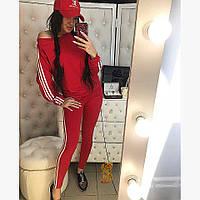 Спортивный костюм Дора, фото 1