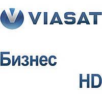 Viasat Бизнес HD