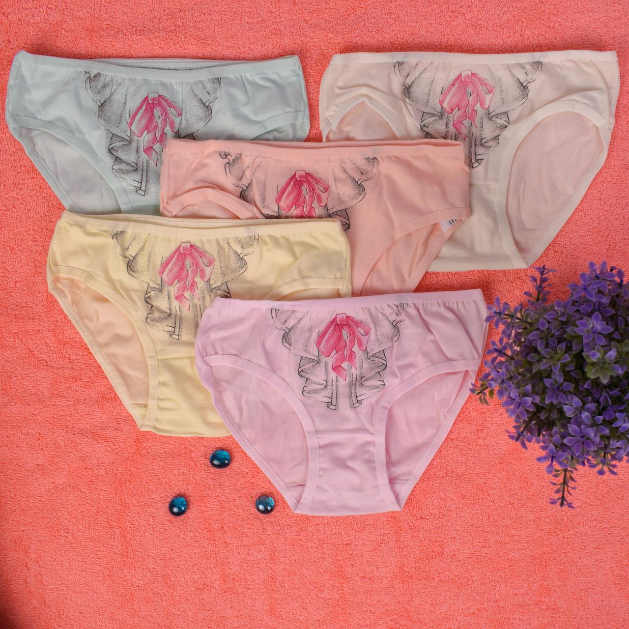 Детские трусики для девочки Турция. Donella 4171WVF. Размер на 10-11 л