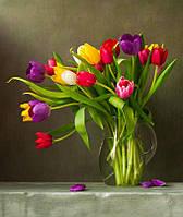 Фотообои тюльпаны в вазе