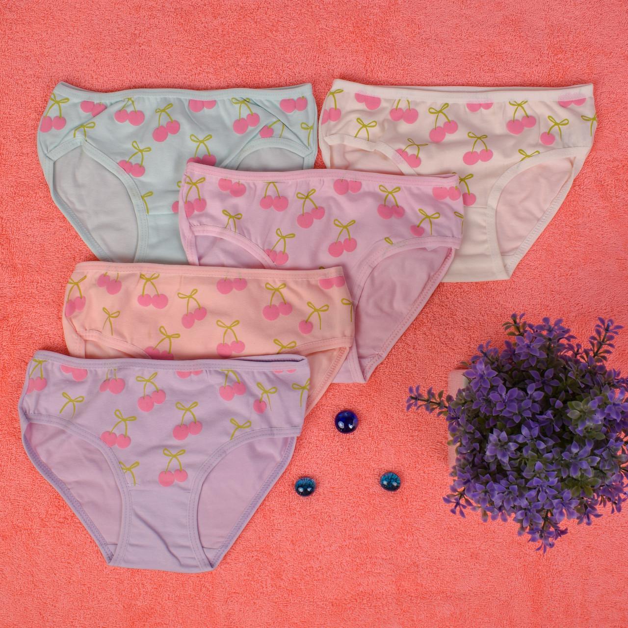 Детские трусики для девочки Турция. Donella 4171WVK. Размер на 2-3 год