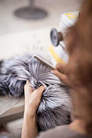 Индивидуальный пошив, фото 1