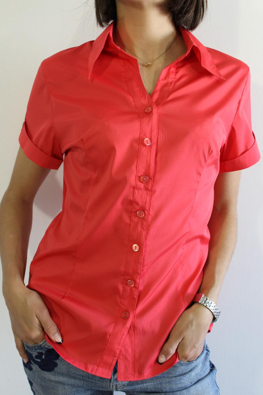 ac91fef5c33 Рубашка Женская Коралловая 03236 — в Категории