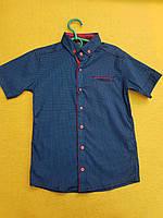 Рубашка на мальчика 12-16 лет синего цвета с красной окантовкой оптом