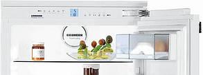 Холодильник Liebherr DNHml 48X13, фото 2