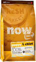 Now Fresh Puppy Grain Free для щенков, 2,72 кг