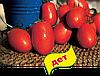 Семена томата Посадас F1 1000 семян Clause