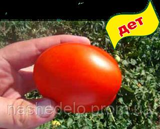 Семена томата Лиона F1 1000 семян Clause