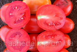 Семена томата Литтано F1 5000 семян Clause
