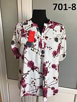 Женская блузка больших размеров Виктория №1  фасон  в размерах от 50 до 58  ,   купить
