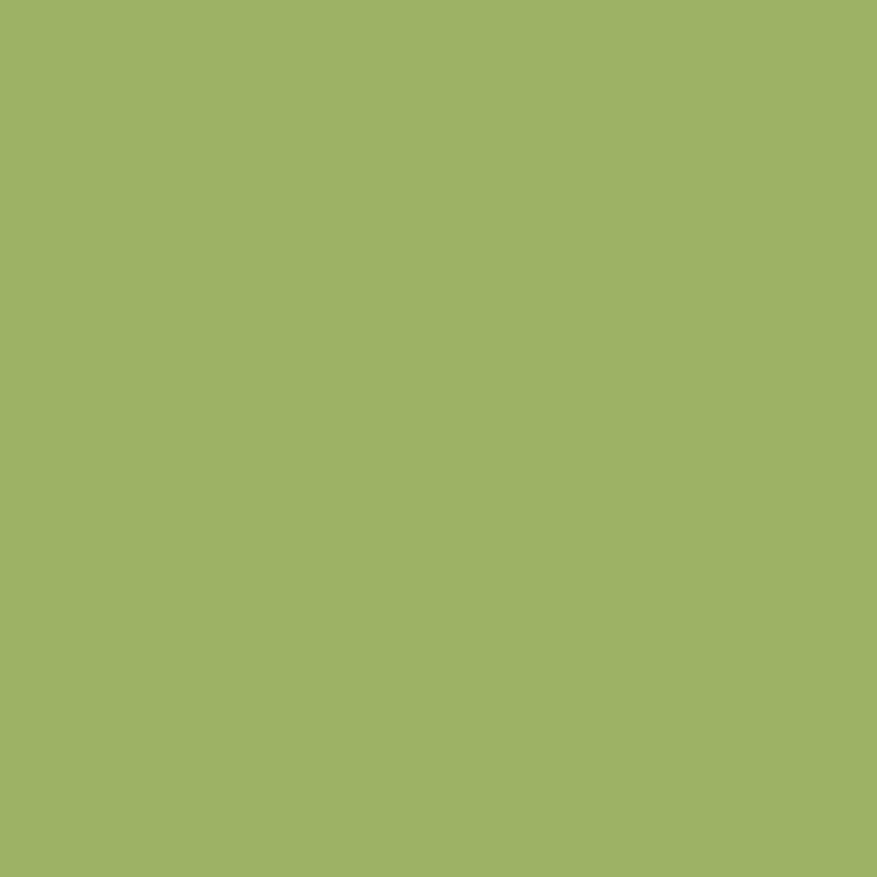 Зелёный киви NEW 2017 U626