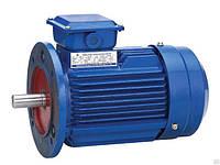 Электродвигатель електродвигун АИР 280 S8 55 кВт 750 об/мин