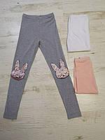 Трикотажные леггинсы  для девочек Glo-Story 110-160 p.p., фото 1