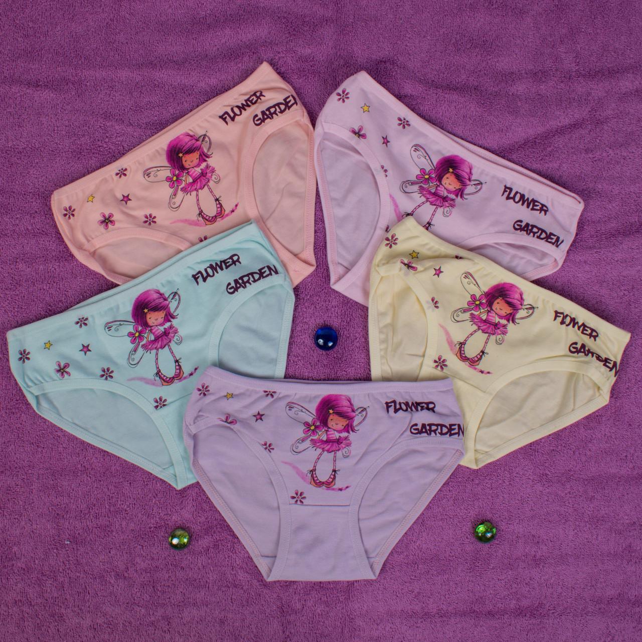 Детские трусики для девочки Турция. Donella 4171WFG. Размер на 4-5 лет