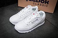 Кроссовки женские Reebok Classic, белые (11562),  [   37 38 41  ]