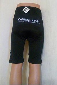 Велошорты лого Nalini с памперсом (XXXL)