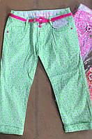 Котоновые брюки  для девочек S&D оптом, 128-158 рр. [Ростовка]