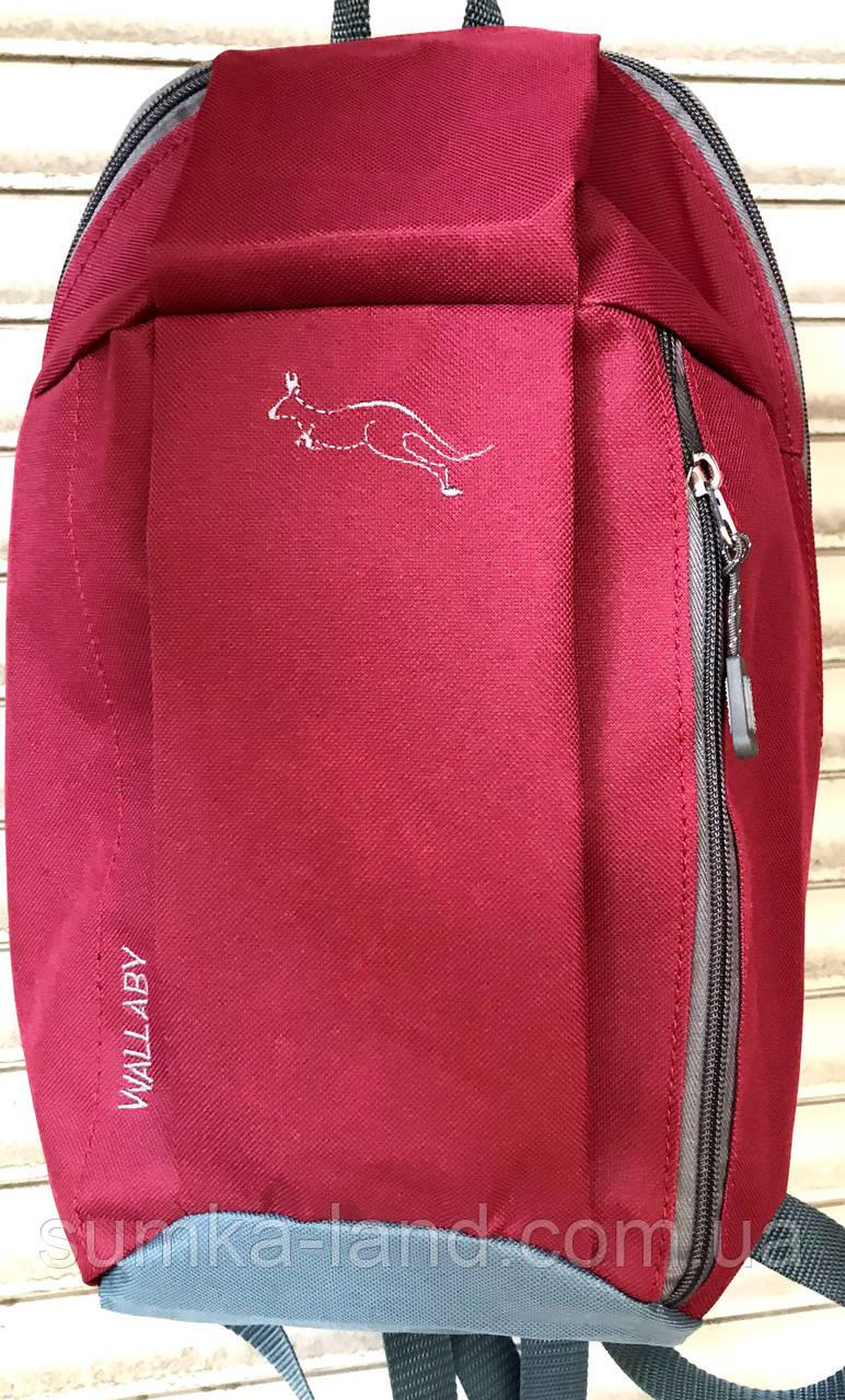 Городской красный рюкзак Wallaby 18*38 см