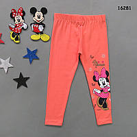 Лосины Minnie Mouse для девочки. 98, 116, 128 см, фото 1