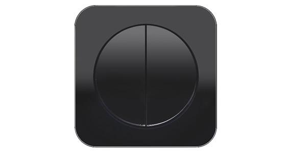 Выключатель двухклавишный Berker R1 чёрный