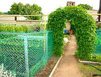 Заборы садовые, сетки от птиц, для ограждения домашней птицы.
