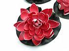Плаваюча декоративна лілія AquaFall діаметр 18 см червона, фото 6